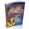 Stress Slayer - Your Resolution To Be Less Stressed
