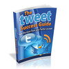 Thumbnail The Tweet Success Guide with MRR