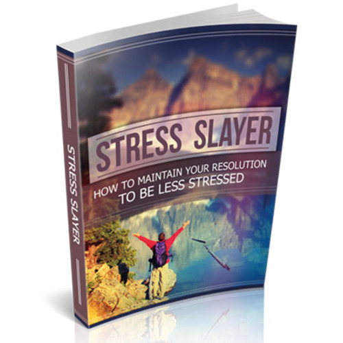 Product picture Stress Slayer - Your Resolution To Be Less Stressed